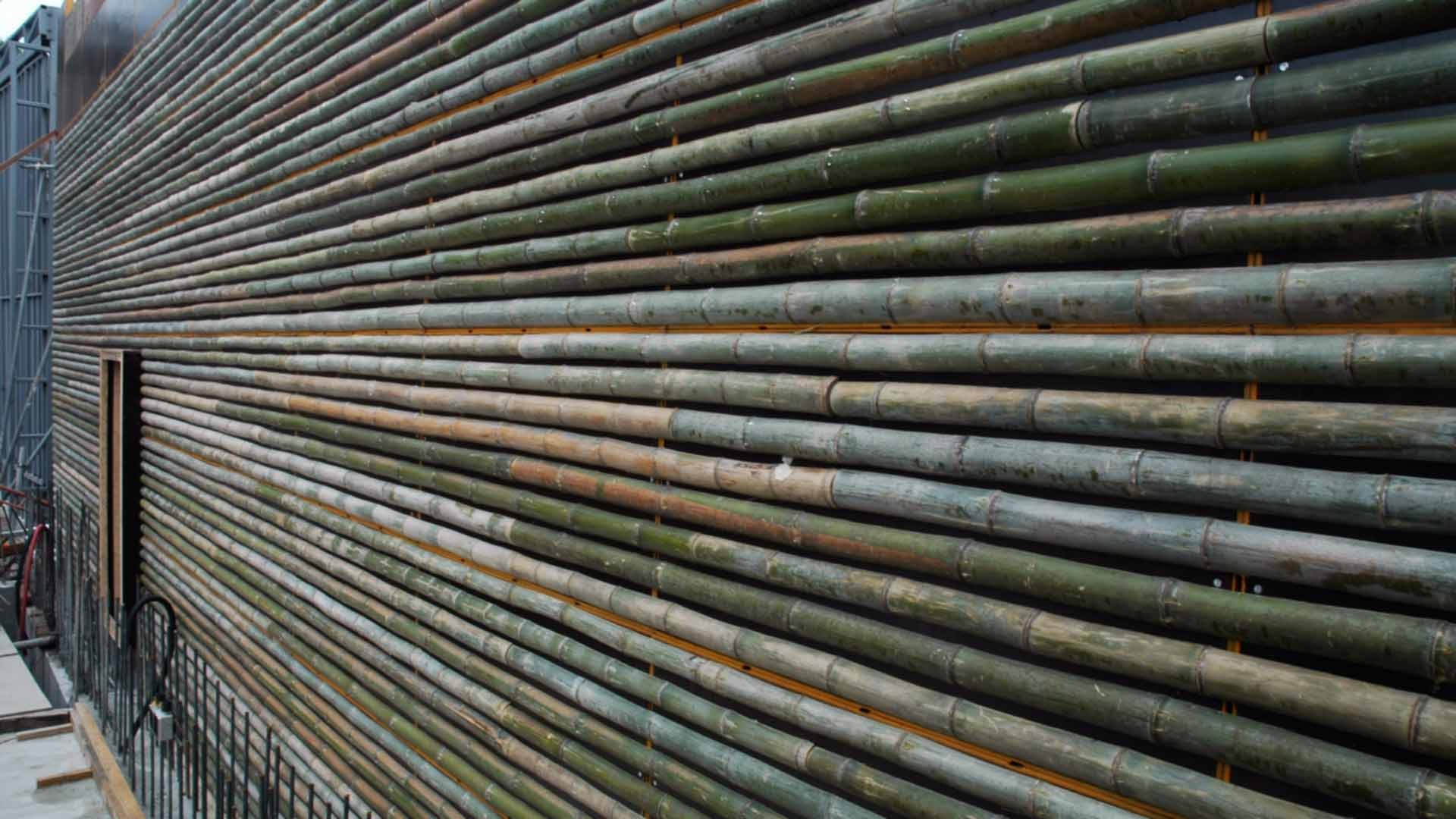 Bamboo form construction for Daeyang Gallery and House.