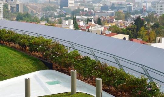 Liverpool Interlomas Rooftop Garden.